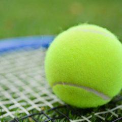 How To Make A Grass Tennis Court