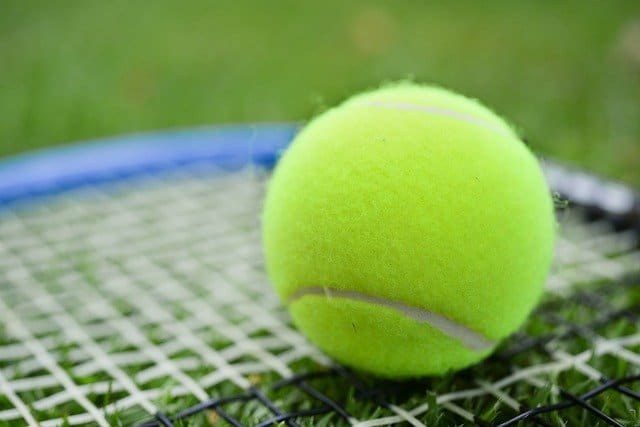 tennis ball and racket close up
