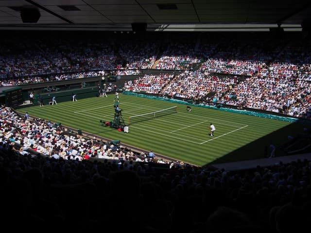 grass court tennis match
