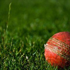 Tennis Ball vs Cricket Ball